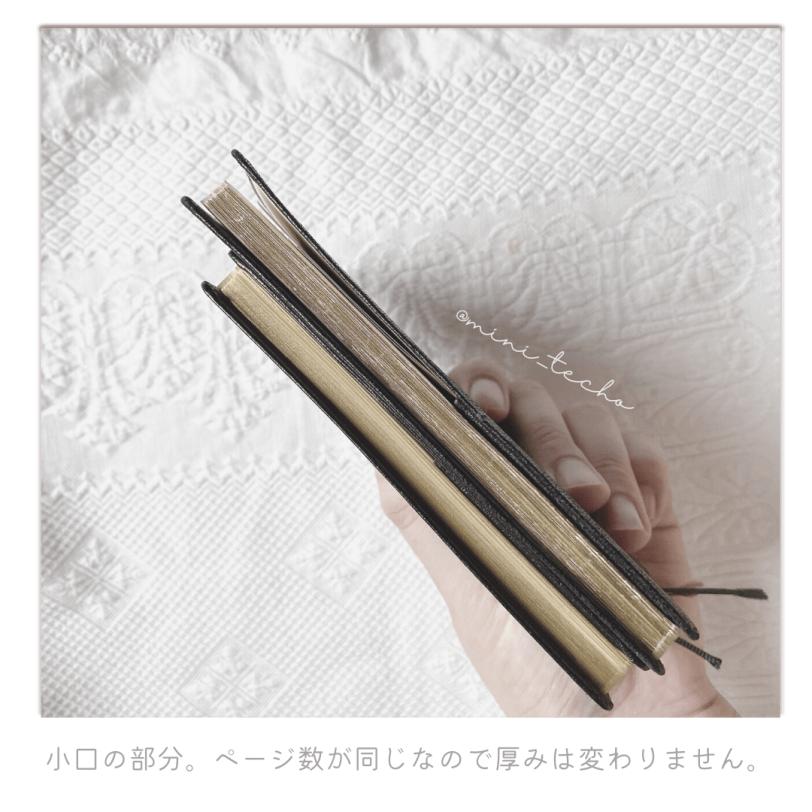 noltygold-hikaku-03
