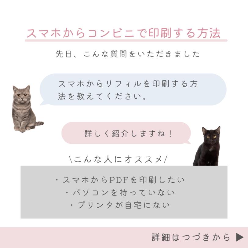 iPhone_netprint_2